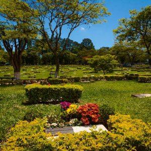 Vista parcial dos jardins