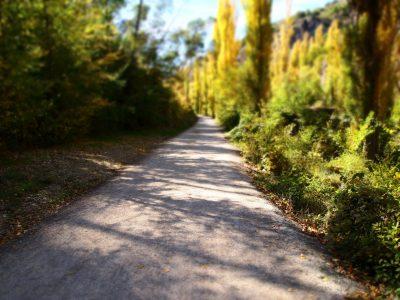 path-204249_1920