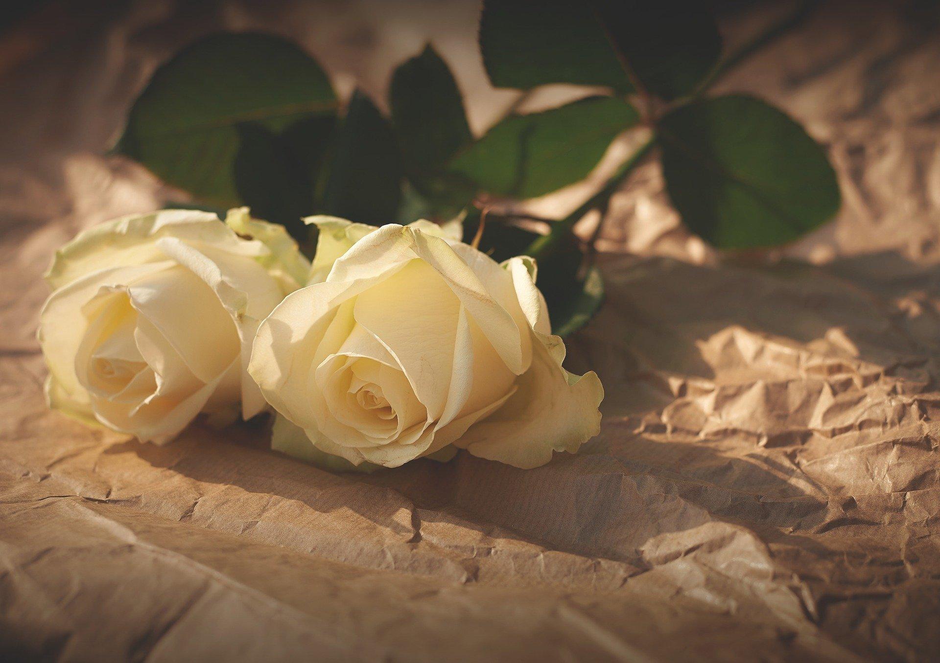 Morte traumática de um ente querido acarreta um luto mais intenso