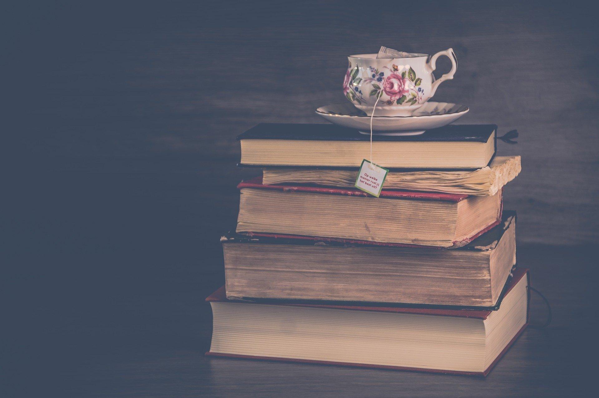 Um livro da Chimamanda pra chamar de nosso